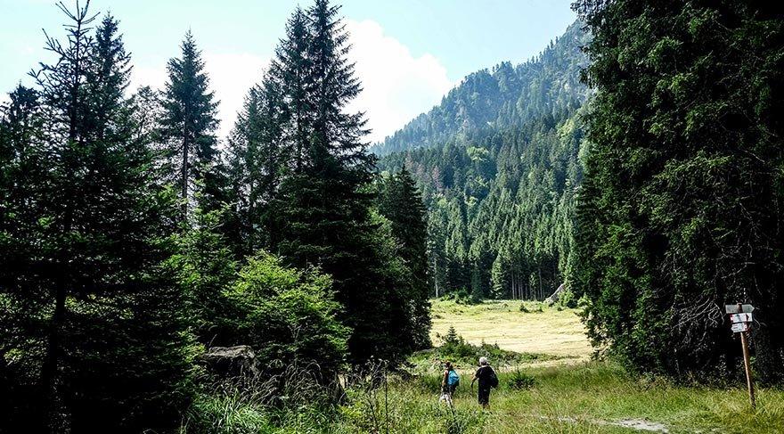 İtalya'nın pastoral güzelliği: Trentino Alto 1