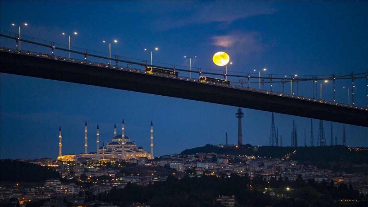 Anadolu Ajansı'ndan haftanın fotoğrafları