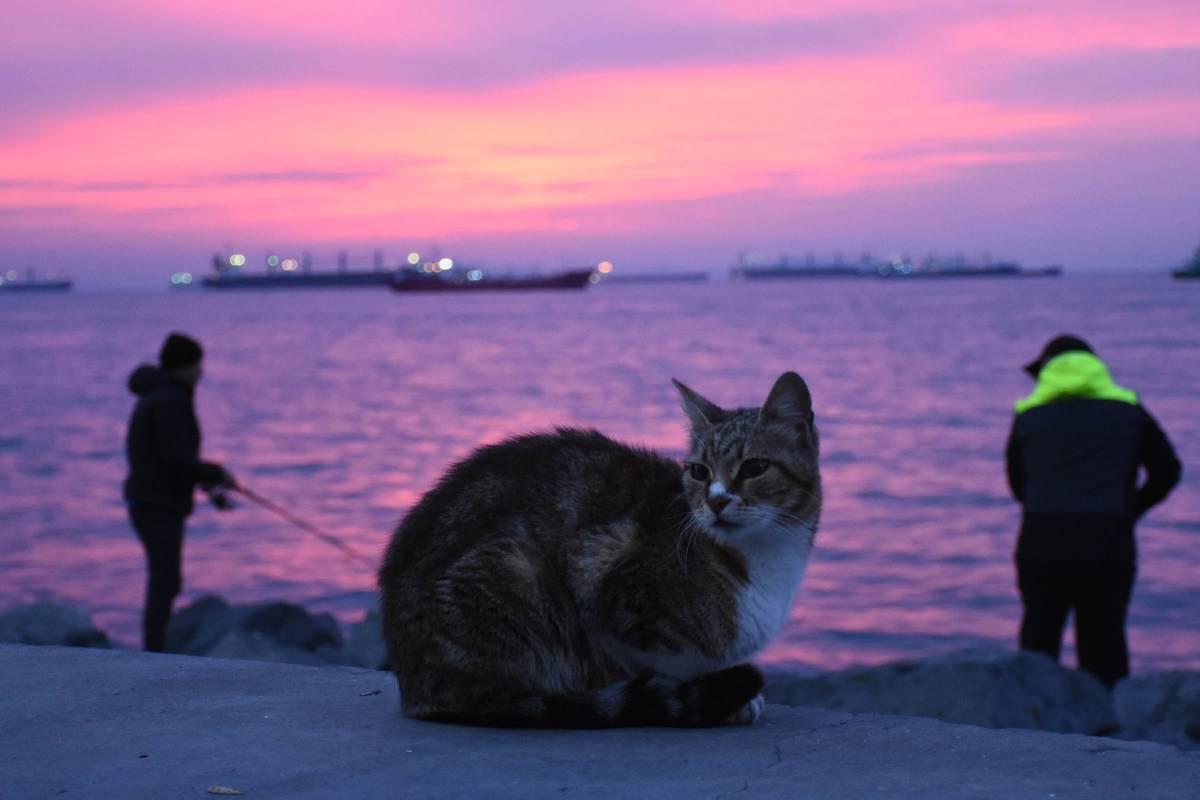 İstanbul, güne 'kızıl' uyandı 1