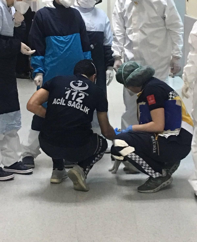 Anne kedi yavrusunu tedavi için bir hastanenin acil servisine götürdü 3