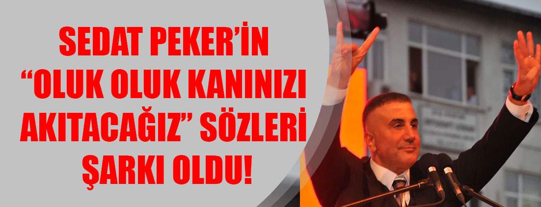 """Sedat Peker'in """"Oluk oluk kanınızı akıtacağız"""" sözleri şarkı oldu!"""