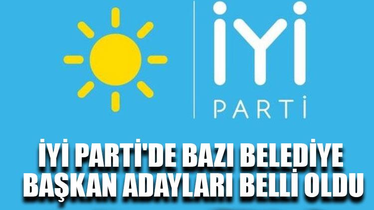 İYİ Parti'de belediye başkan adayları belli oldu