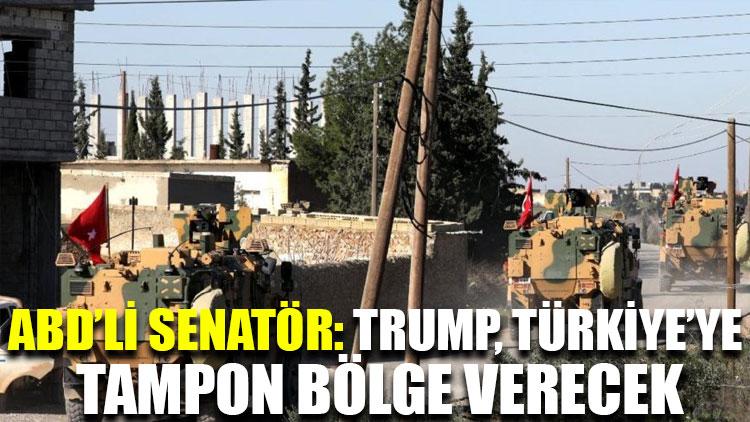 ABD'li senatör: Trump, Türkiye'ye tampon bölge verecek