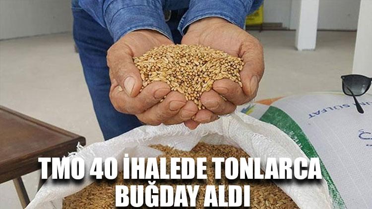 TMO 40 ihalede tonlarca buğday aldı
