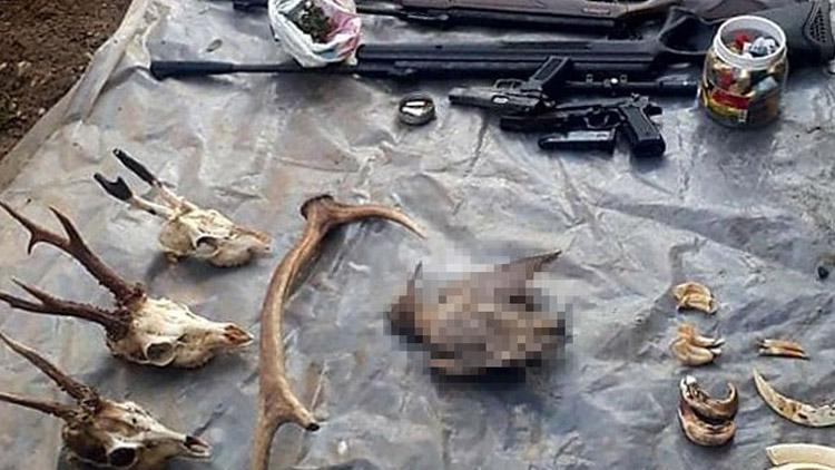 Koruma altındaki hayvan avına 32 bin 193 lira ceza