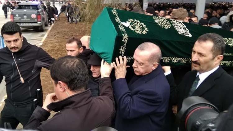 Karadeniz'de 'kahverengi kokarca' tehlikesi: Gördüğün yerde yok et!