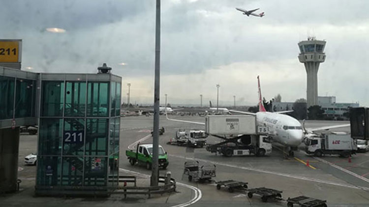 Atatürk Havalimanı'nda 'köpek' krizi: Uçaklar pas geçti