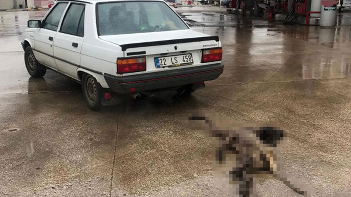 Köpeği iple otomobilin arkasına bağlayıp sürüklemişti! Cezası belli oldu