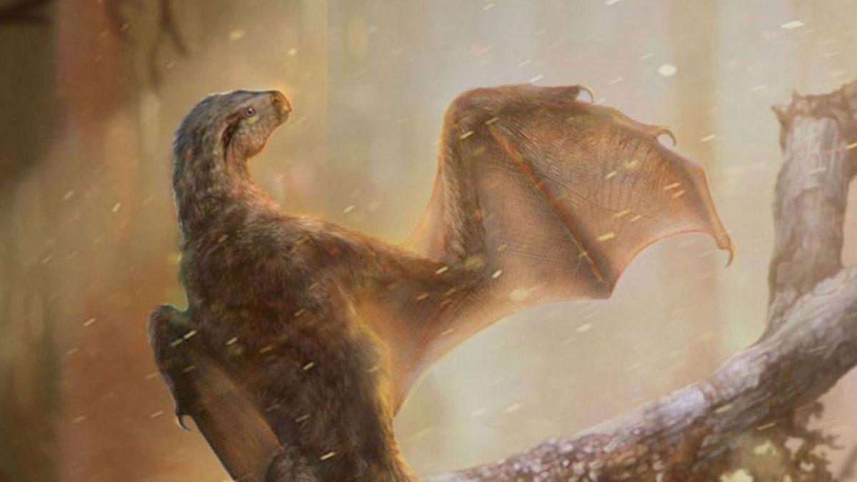 Bilim dünyasında heyecan yaratan keşif: Ejderha benzeri dinozor fosili keşfedildi