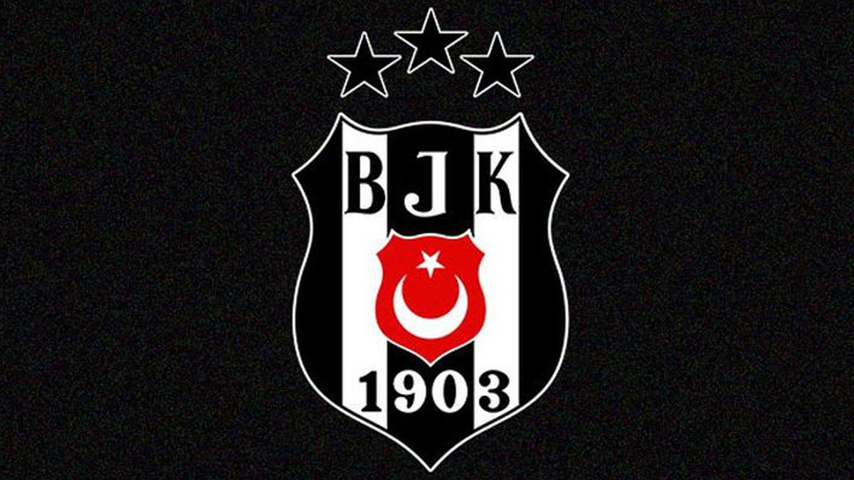 Beşiktaş, yeni başkanını seçiyor