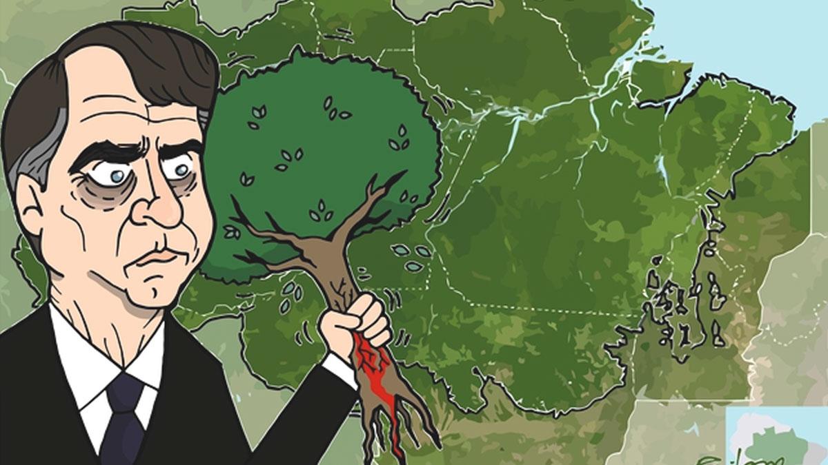 Bolsonaro'nun Amazon politikası 'dünyanın akciğerlerini' yok ediyor