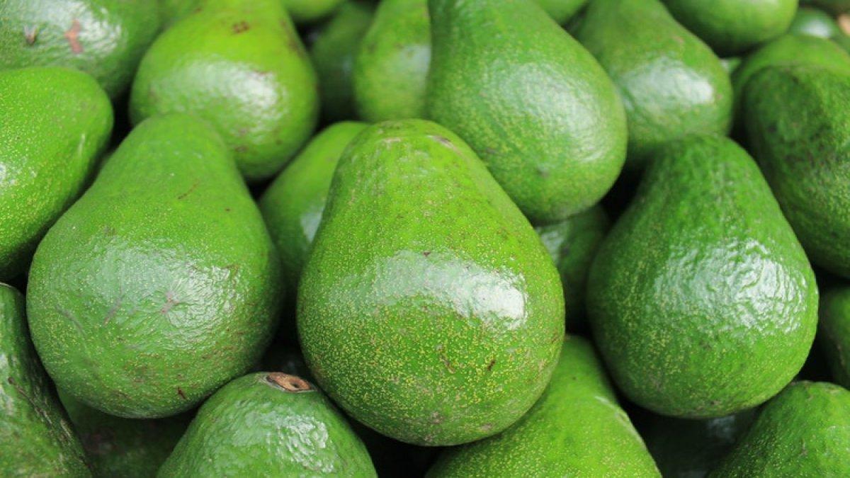 El bombası sandılar avokado çıktı! Hırsızlar avokado ile banka soydu