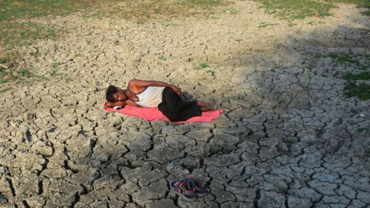 Hindistan'da kuraklık: 5 yılda 4 bin 700 çiftçi intihar etti