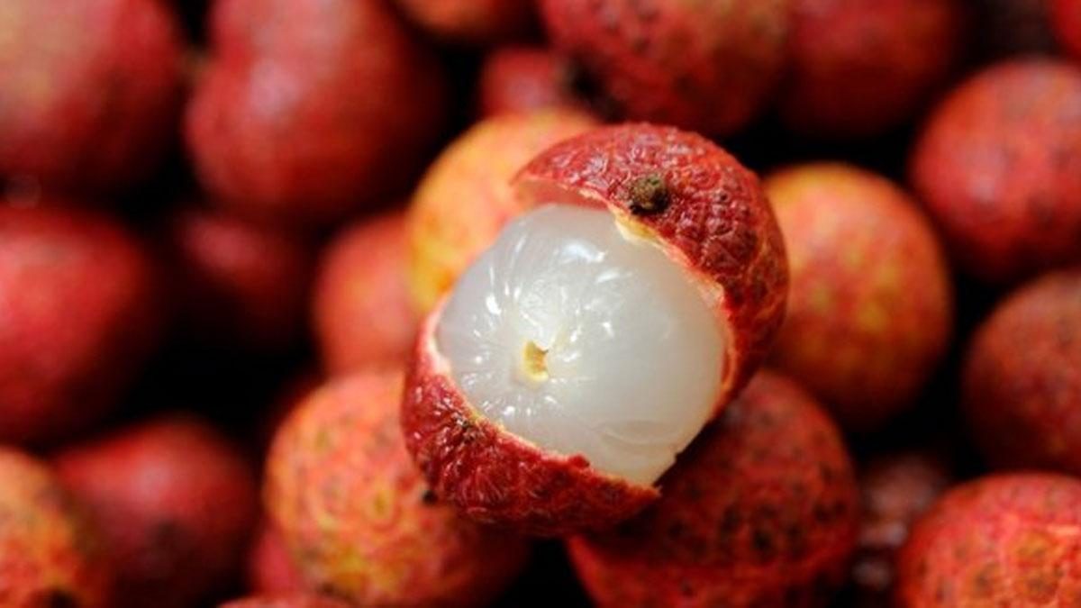 Bu meyveyi yiyen 20 çocuk son 24 saatte hayatını kaybetti