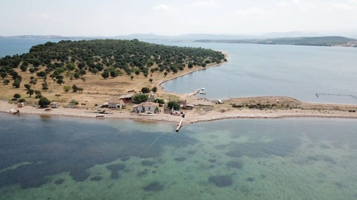 Balıkesir'de 105 milyon liraya ada satılıyor