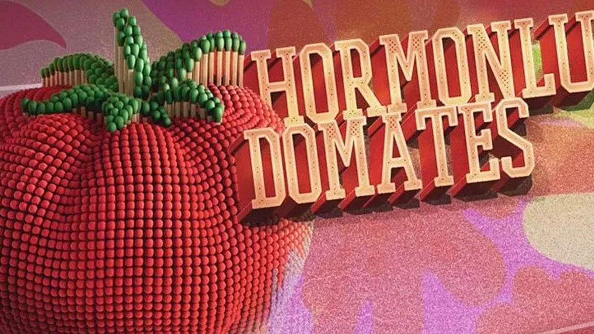 15. Hormonlu Domates Ödülleri sahiplerini buldu: Ömür boyu hormonlu domates ödülü Süleyman Soylu'ya gitti