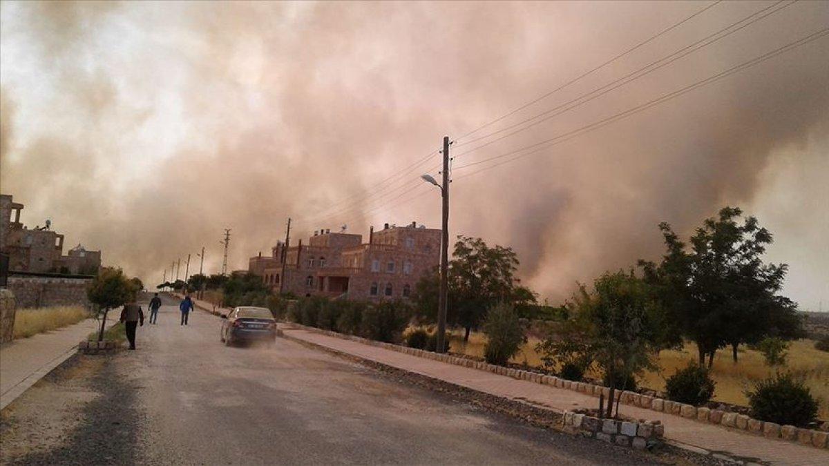 Mardin'de orman yangını! 6 Süryani köyü ve Botaş İstasyonu tehdit altında