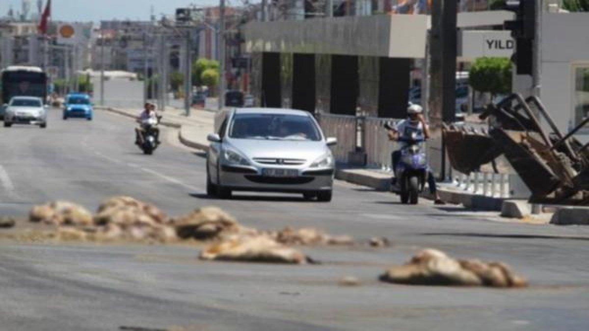 Antalya'da şoke eden görüntü! TIR'dan caddeye döküldü...