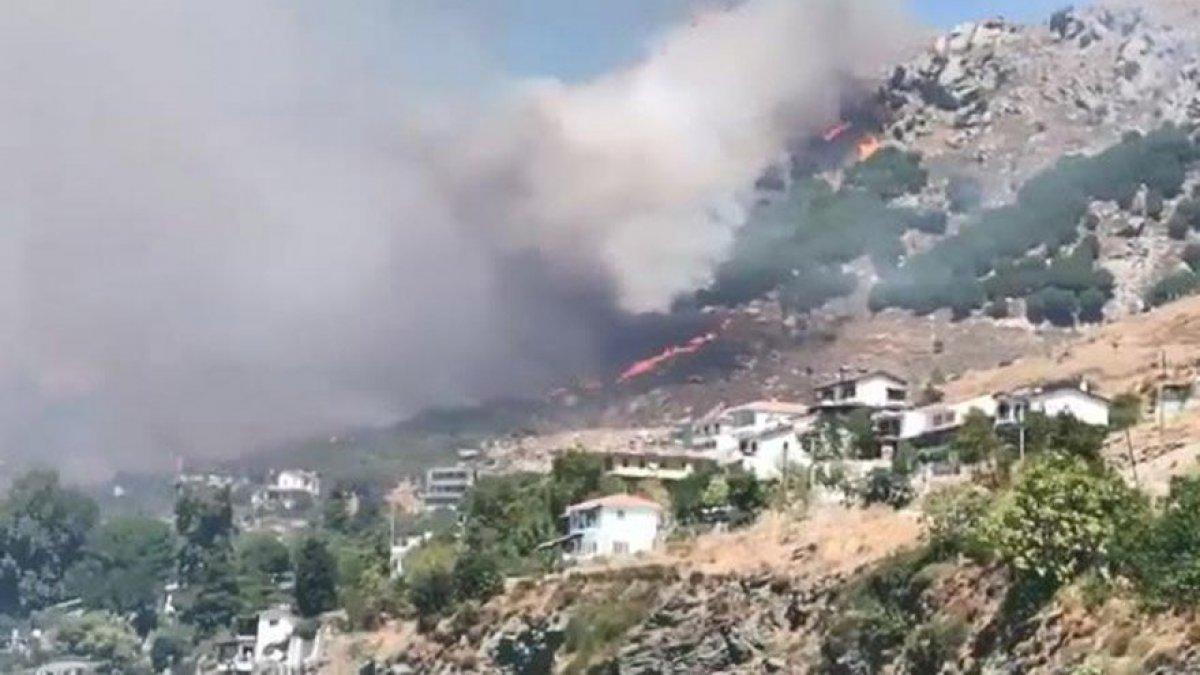 Marmara Adası'nda orman yangını...
