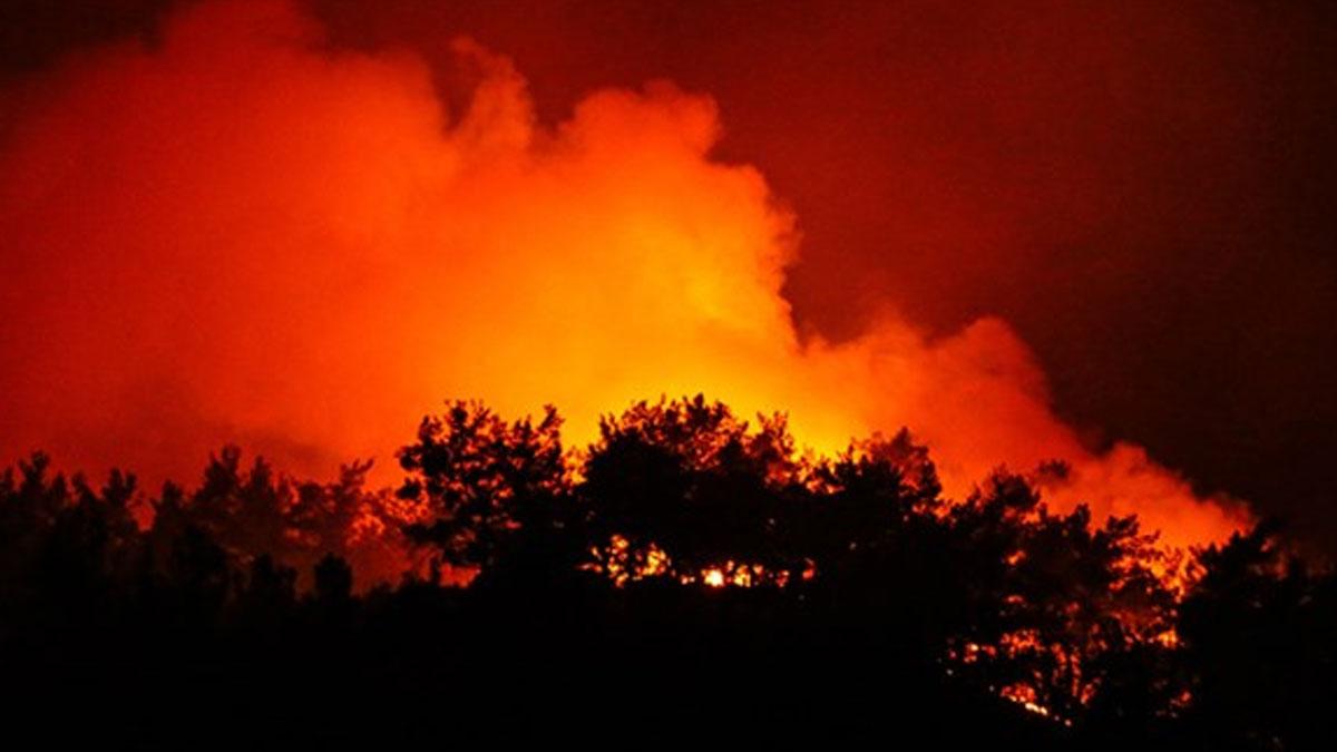 CHP'li Sertel'den İzmir'deki yangınla ilgili flaş iddia