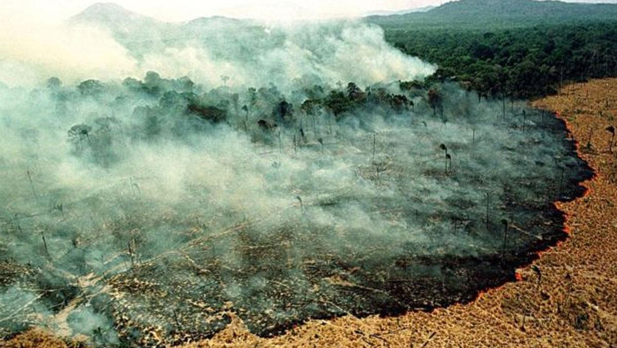 Dünyanın akciğerleri bir haftadır yanıyor