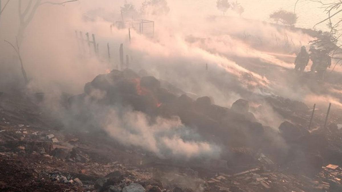 Beylikdüzü'nde yangın: 650 kümes hayvanı öldü