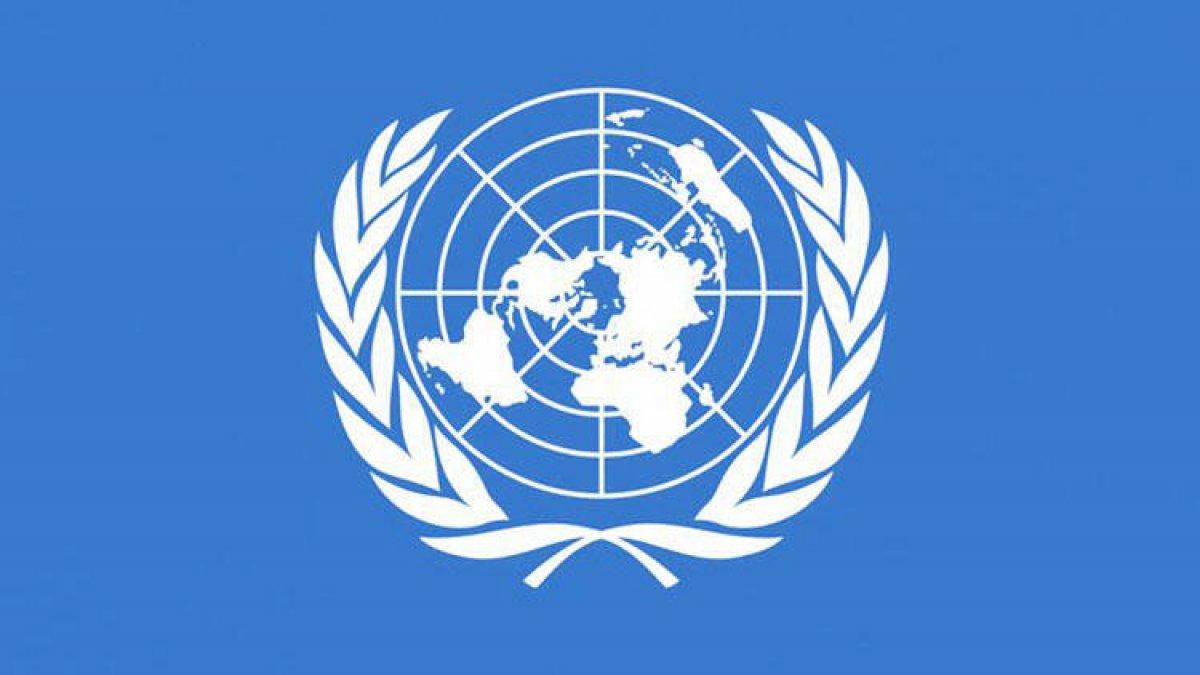 Birleşmiş Milletlerden 'Türkiye' açıklaması