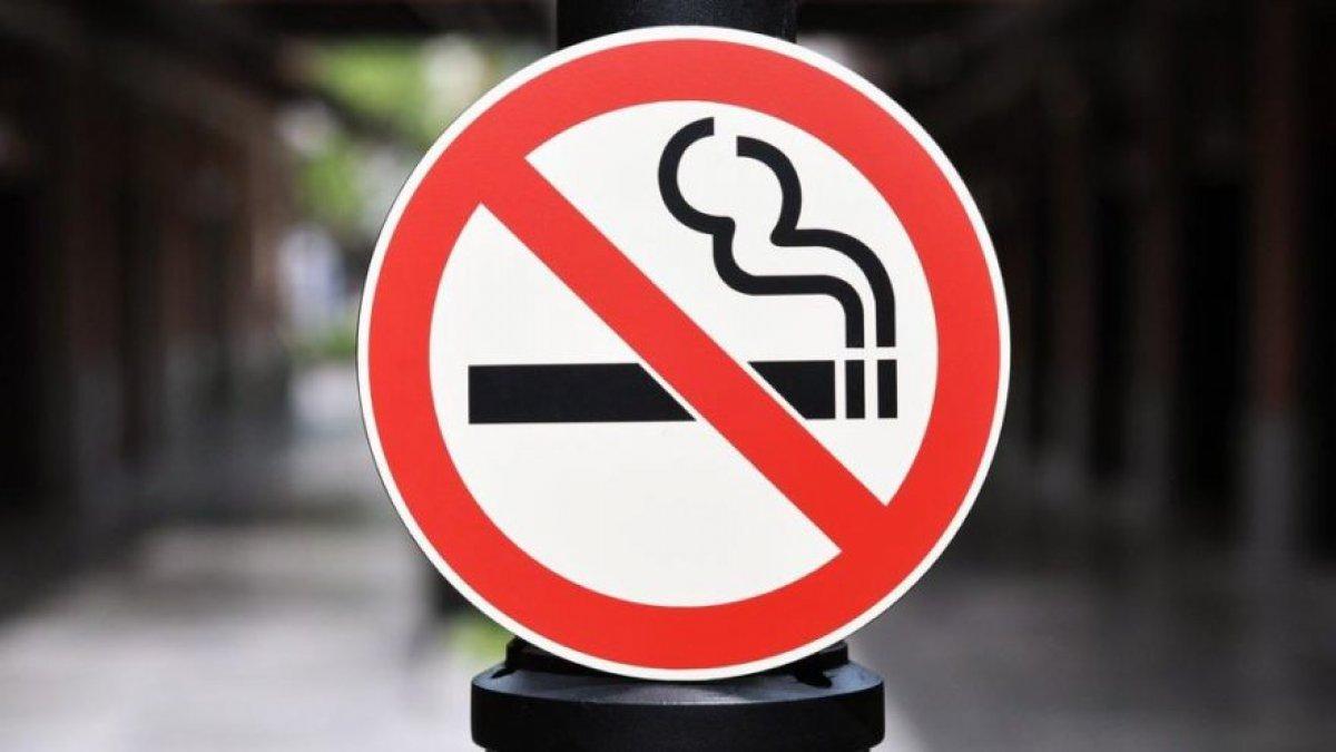 Türkiye ve Rusya'nın ardından sigara yasakları kervanına Hollanda da katıldı
