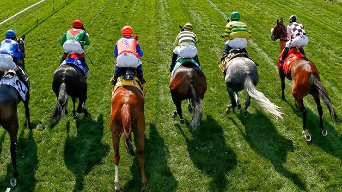 Türkiye Varlık Fonu, At yarışları için harekete geçti!