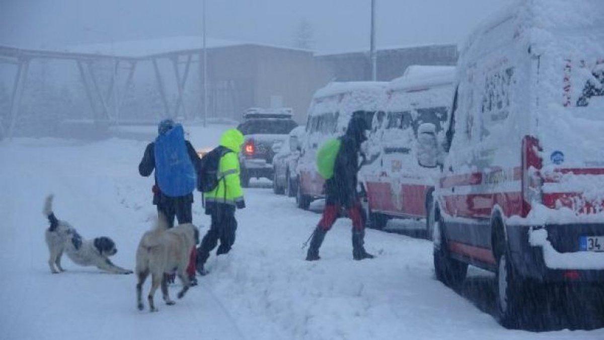 Kaybolan 2 dağcıyı arama çalışmaları 12'nci gününde devam ediyor