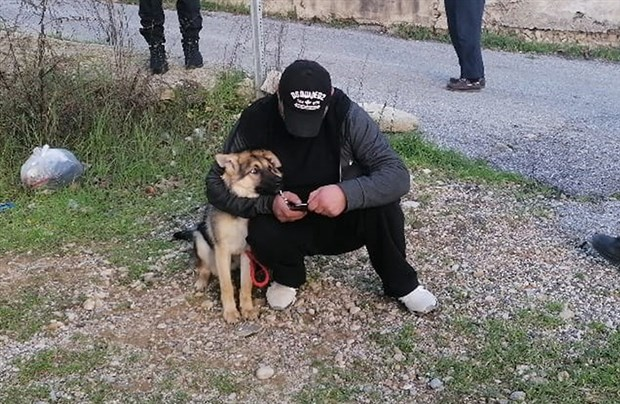Köpeği bıçaklayan adam: Cinnet geçirip, bıçakladım