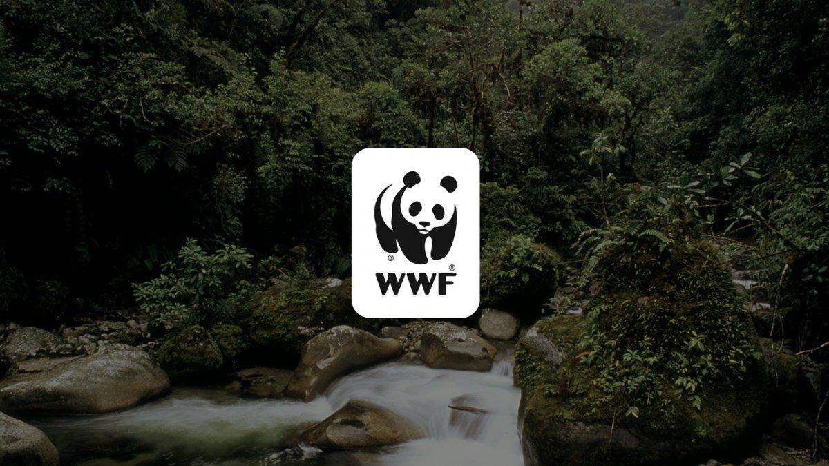 WWF'den 'Doğanın Yok Oluşu ve Pandemilerin Yükselişi' raporu