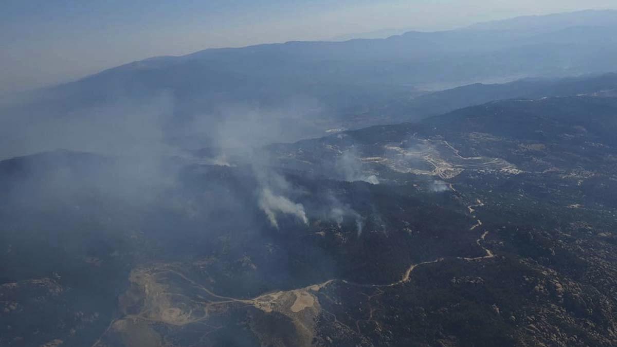 Aydın'da başlayan yangın Muğla'ya ulaştı: Müdahale sürüyor