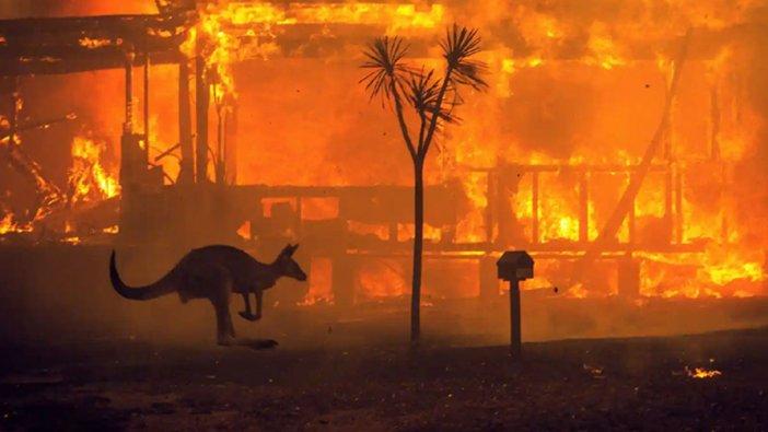 Avustralya'da aylardır süren yangınların perde arkasında ne var?