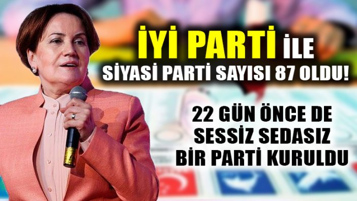 Meral Akşener'in İYİ Partisi, Türkiye'nin faaliyetteki 87. partisi oluyor
