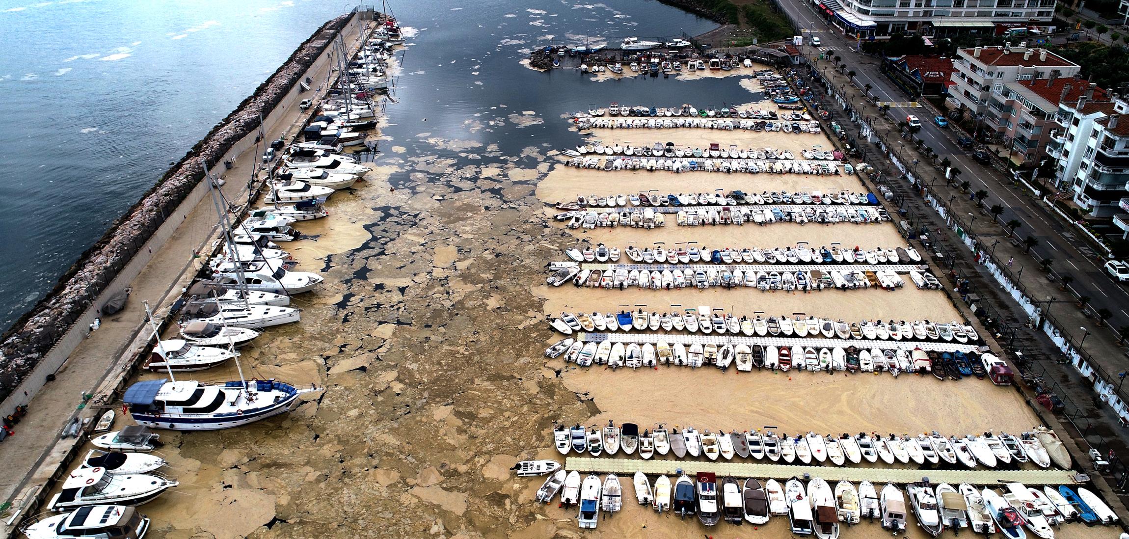 deniz-salyasiyla-kaplanan-mudanya-yat-limani-havadan-goruntulendi-8828-dhaphoto3.jpg