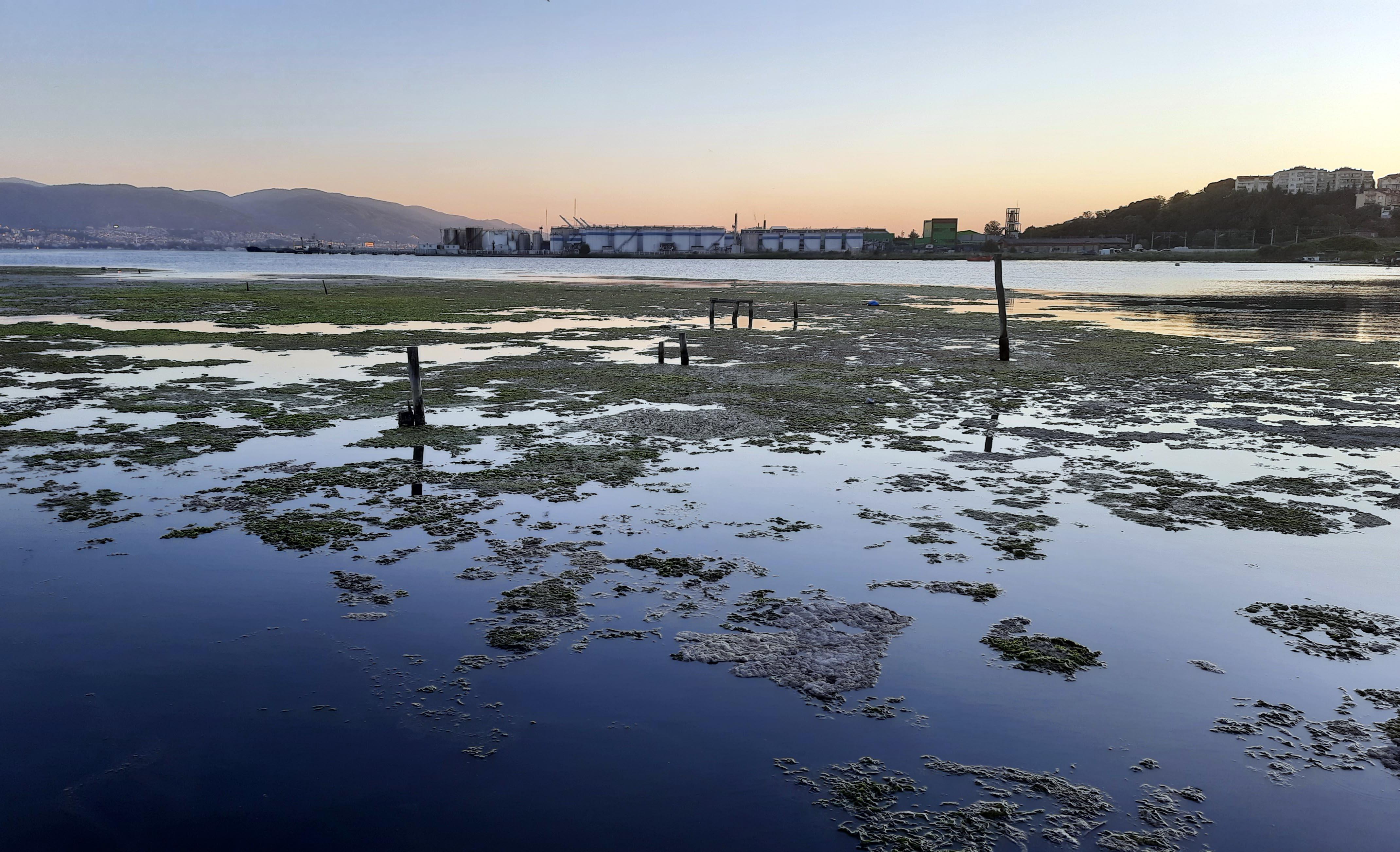 musilajin-deniz-altindaki-tahribatigoruntulendi-9136-dhaphoto11.jpg