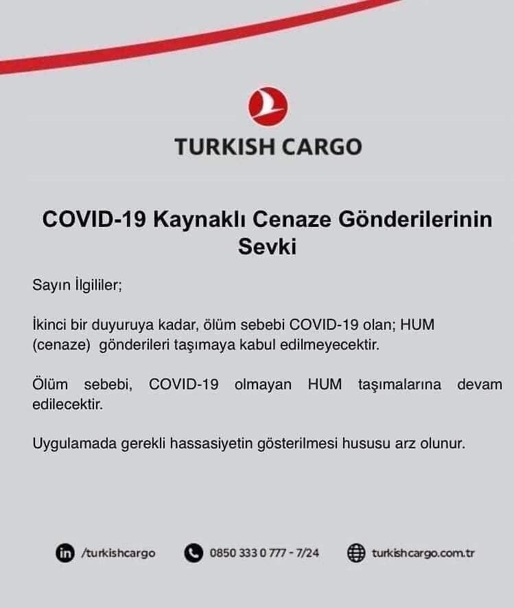 turkishcargo.jpg
