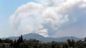 İzmir'de orman yangını: İlçelere su ve elektrik verilemiyor