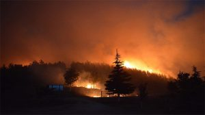 Yangın İzmir'den Manisa'ya ulaştı: 2 bin kişi tahliye edildi