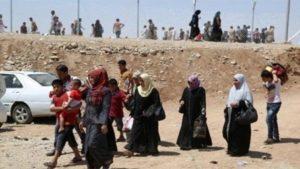 İnsan Hakları Gözlemevi: Telafer'deki Türkmenleri IŞİD'den kurtarın