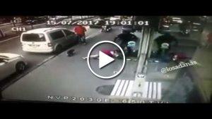 Adana'da inanılmaz görüntüler! Kedi köpeğe böyle saldırdı…