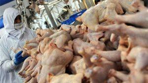 """Beyaz et sektörüne """"rekabet"""" soruşturması"""