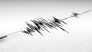 Bodrum'da art arda iki deprem