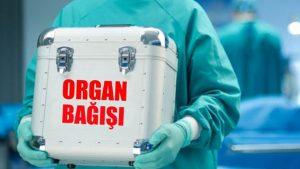 Türkiye'de organ bağışı birincisi ilçe belli oldu