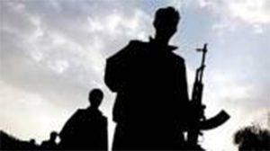 PKK'lı teröristler Siirt'te iş makinelerini yaktı