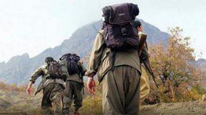 PKK'lı teröristler bir vatandaşı ağaca bağlayıp öldürdüler
