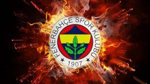 Fenerbahçe'ye bir Hollandalı golcü daha geldi