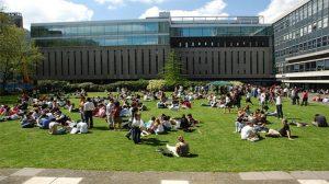 OECD'nin yayımladığı rapora göre Türkiye'de 4 üniversite mezunundan 1'i işsiz