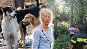 Yunanistan'da sokak köpekleri Oxford'lu profesörü yedi!